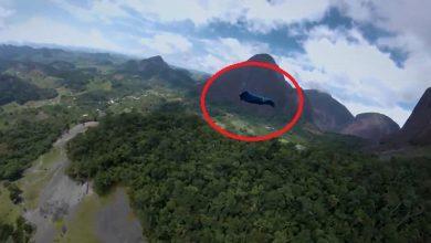 شاهد: الطيران وسط الغابات - صحيفة هتون الدولية