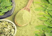ما هي فوائد عشبة المورينجا للشعر؟