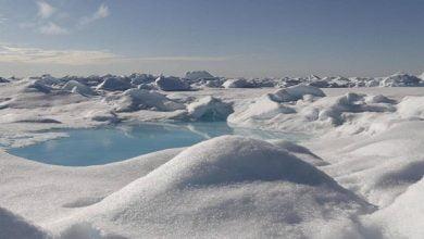أين يقع القطب الشمالي -صحيفة هتون الدولية