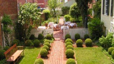 كيف تتعلم فن تنسيق الحديقة - صحيفة هتون الدولية-