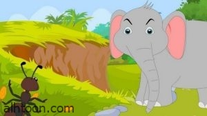 قصة الفيل والنملة للأطفال -صحيفة هتون الدولية